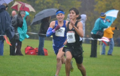 Boys cross country wins sectional; returns to state