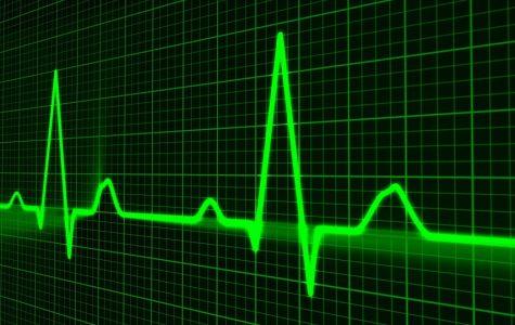 Students get free EKGs