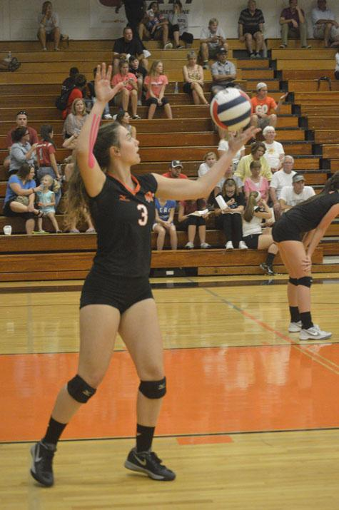 Volleyball+aims+for+sectional+title+in+rematch