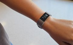 Fitbits help guide fitness