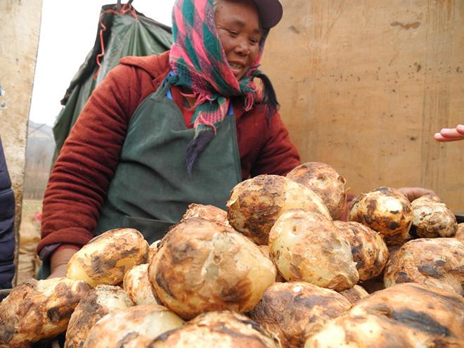 A+woman+sells+potatoes+on+the+side+of+a+highway+in+Yunnan%2C+China.+Efforts+to+increase+potato+consumption+are+widespread%2C+spanning+from+new+restaurants+to+various+propaganda.++%0A