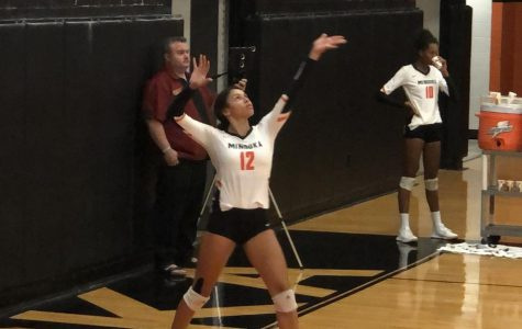 Volleyball takes win over Lincoln-Way East