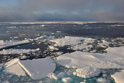 Melting sea ice in the Arctic is having an effect on the environment.